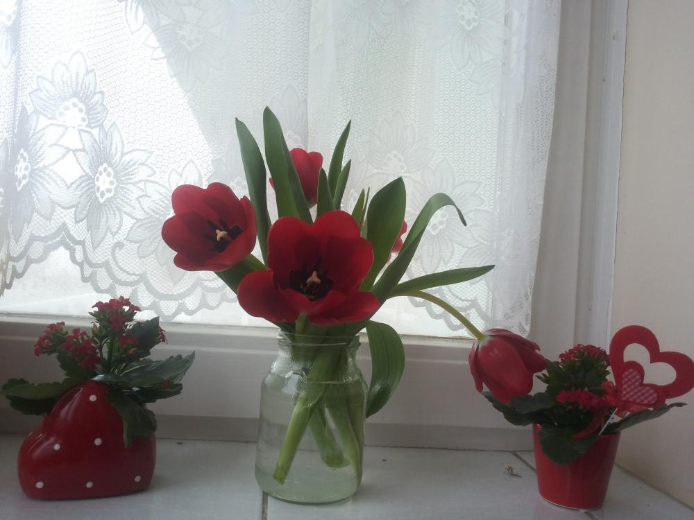 Valentin napi virágok az ablakban